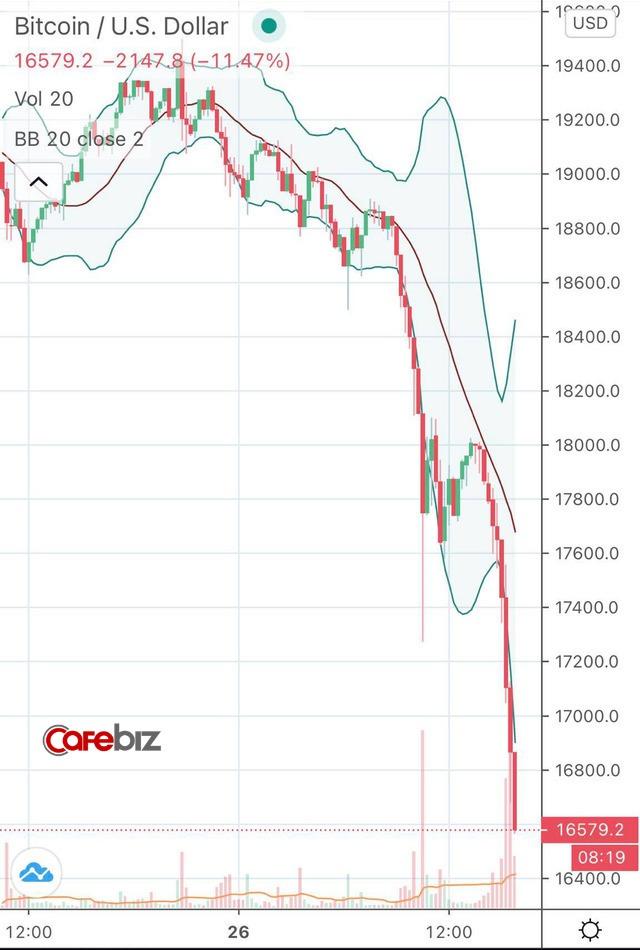 Thất bại trước ngưỡng cản lịch sử, Bitcoin và toàn thị trường tiền số đồng loạt gãy cánh sau chuỗi ngày bay cao - Ảnh 1.