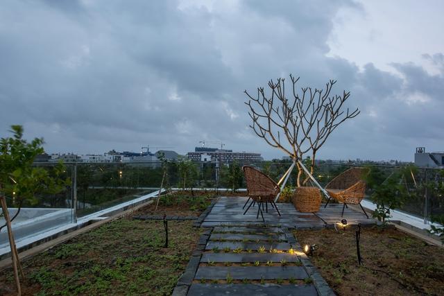 Nhà 2 tầng mở hoàn toàn với cửa kính, cả sân thượng là vườn trồng rau và khu vui chơi - Ảnh 6.
