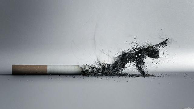 Nói không với thuốc lá: kẻ giết người số 1 thế giới, nhiều nước muốn cấm nhưng chưa dứt được - Ảnh 2.