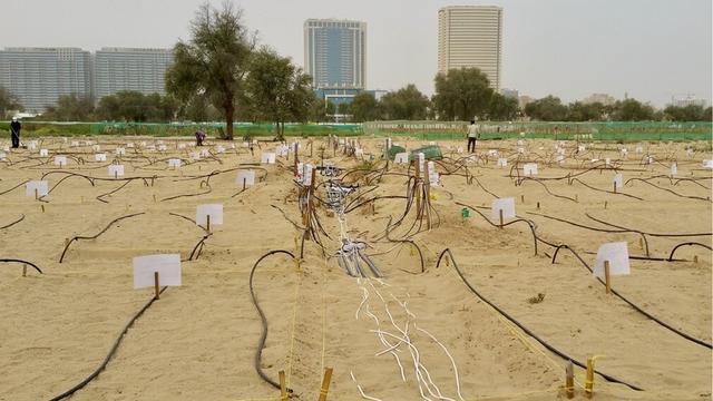 Đất sét nano: Công nghệ đột phá có thể biến sa mạc thành đồng ruộng trong 7 tiếng đồng hồ - Ảnh 4.
