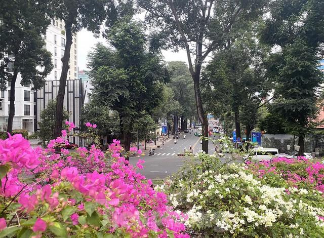 Hồ Con Rùa sắp trở thành phố đi bộ ở TPHCM - Ảnh 11.