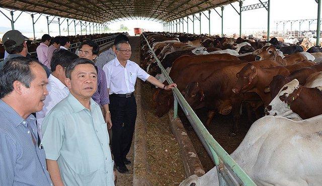 10 năm bão táp của Hoàng Anh Gia Lai: Bỏ bất động sản, tìm về nông nghiệp, từ đỉnh cao huy hoàng tới mấp mé vực thẳm - Ảnh 5.