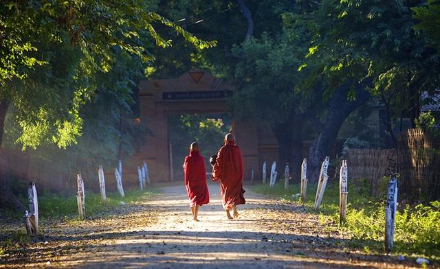 10 bài học từ những lời dạy của Đức Phật: Để không bị tổn thương hãy nhớ kỹ điều số 8 - Ảnh 5.