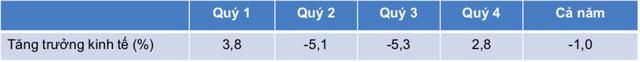VEPR: Tăng trưởng GDP cả Quý 2 và Quý 3 của Việt Nam đều dự báo âm trong kịch bản trung tính, tăng trưởng GDP Quý 2 âm 4,9% - Ảnh 4.