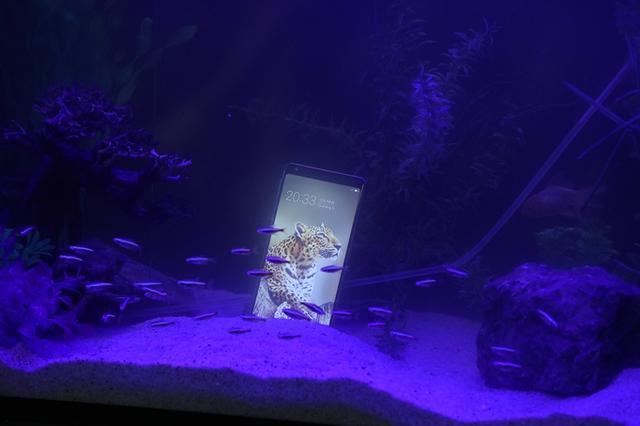 Bphone trình làng B86: Chụp ảnh 'đóng băng khoảnh khắc', thả vào bể cá vẫn hoạt động bình thường, giá chưa đầy 9 triệu đồng - Ảnh 2.