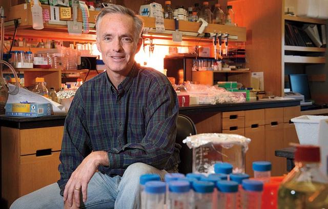 Nhà khoa học MIT đang phát triển những chiếc khẩu trang tự động phát sáng khi dính virus corona - Ảnh 2.