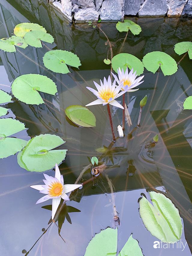 Ngôi nhà vườn 1000m² tọa lạc trên đồi đẹp yên bình với ngoại thất sân vườn rực rỡ sắc màu hoa lá ở Hòa Bình của đôi vợ chồng trẻ - Ảnh 19.
