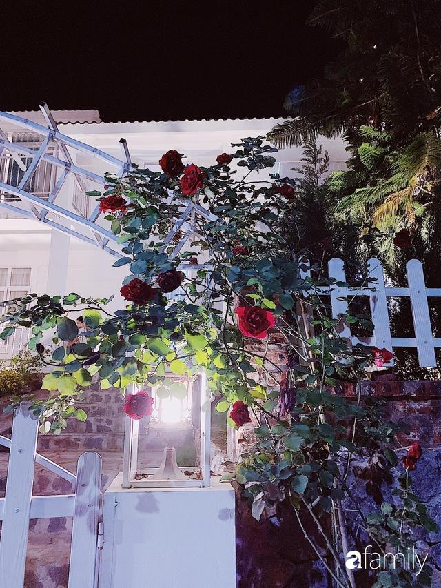 Ngôi nhà vườn 1000m² tọa lạc trên đồi đẹp yên bình với ngoại thất sân vườn rực rỡ sắc màu hoa lá ở Hòa Bình của đôi vợ chồng trẻ - Ảnh 20.