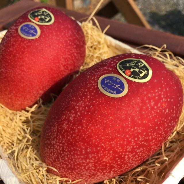 """Ai cũng """"sốc"""" khi nghe qua mức giá của 8 loại trái cây đắt nhất hành tinh này, bỏ ra hàng trăm triệu mới mua được là chuyện bình thường - Ảnh 15."""