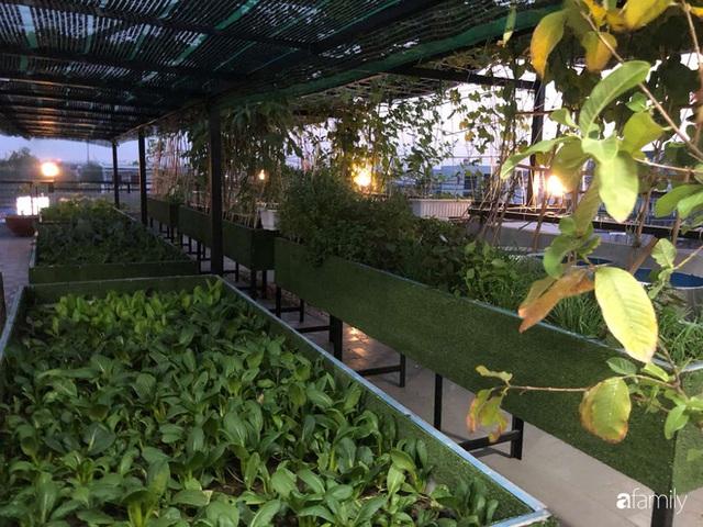 Doanh nhân Sài Gòn trồng cả vườn rau như trang trại và hồ sen trên sân thượng rộng 300m² - Ảnh 12.