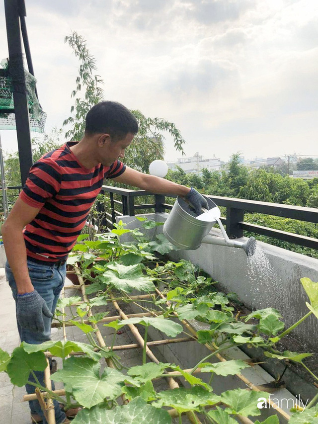 Doanh nhân Sài Gòn trồng cả vườn rau như trang trại và hồ sen trên sân thượng rộng 300m² - Ảnh 13.