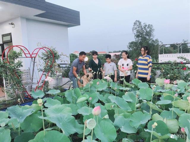 Doanh nhân Sài Gòn trồng cả vườn rau như trang trại và hồ sen trên sân thượng rộng 300m² - Ảnh 16.