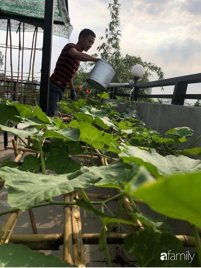 Doanh nhân Sài Gòn trồng cả vườn rau như trang trại và hồ sen trên sân thượng rộng 300m² - Ảnh 8.