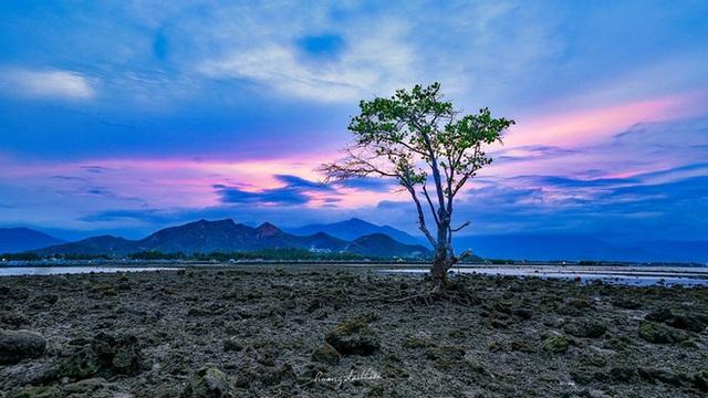 Bức ảnh Ông già và biển cả phiên bản Việt lọt top 1 ảnh về câu chuyện đại dương do National Geographic bình chọn và chia sẻ đầu tiên của chính tác giả - Ảnh 6.