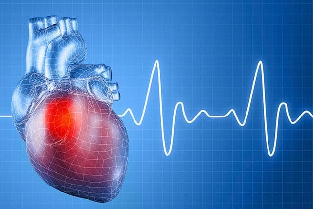 Đông y mách bạn cách dưỡng ngũ tạng: Bệnh chỉ là ngọn, phải phòng chữa từ gốc - Ảnh 5.
