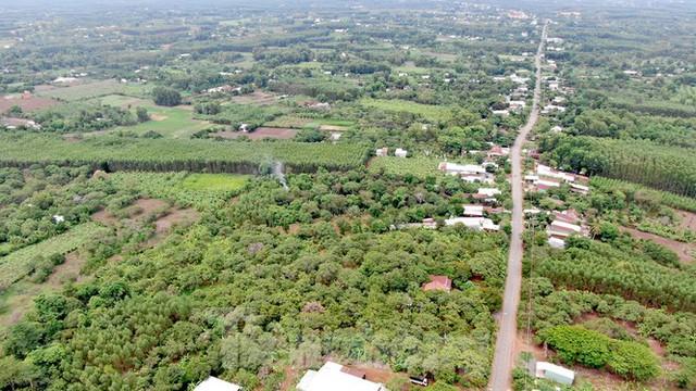 Cận cảnh khu đất hơn 1,8 nghìn ha đang thu hồi làm sân bay Long Thành - Ảnh 16.