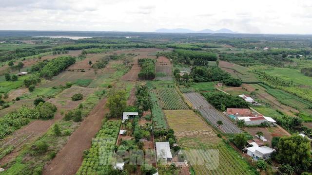 Cận cảnh khu đất hơn 1,8 nghìn ha đang thu hồi làm sân bay Long Thành - Ảnh 17.