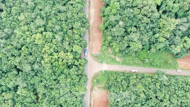 Cận cảnh khu đất hơn 1,8 nghìn ha đang thu hồi làm sân bay Long Thành - Ảnh 3.