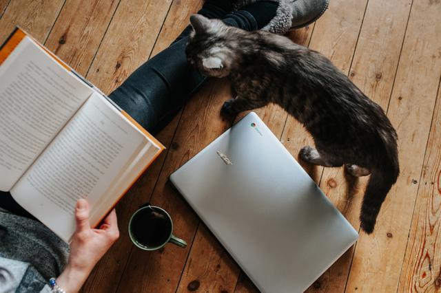 Vì sao tôi không thể tịnh tâm lại đọc sách? Không bồi dưỡng thói quen đọc sách, sớm muộn gì cũng hối hận - Ảnh 1.