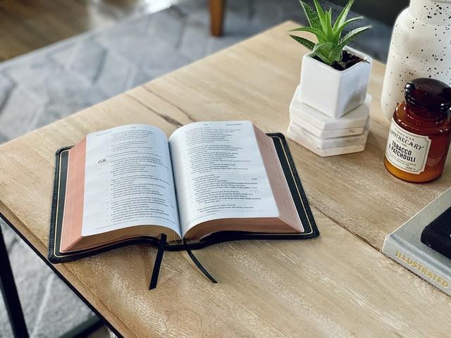 Vì sao tôi không thể tịnh tâm lại đọc sách? Không bồi dưỡng thói quen đọc sách, sớm muộn gì cũng hối hận - Ảnh 2.