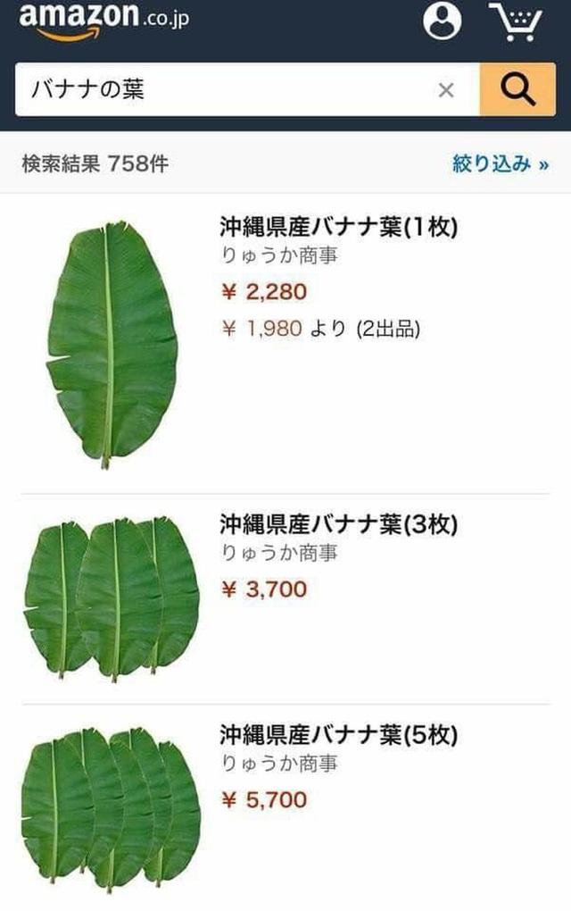 Hạt vải bị bỏ đi ở Việt Nam đi máy bay sang Nhật thành hàng hiếm có giá cao bất ngờ - Ảnh 3.