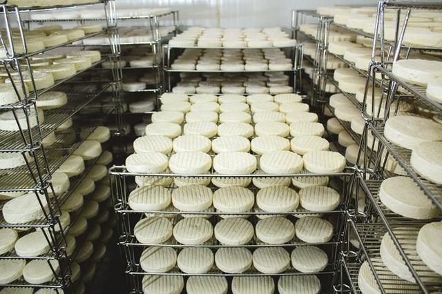 Báo CNN hết lời ca ngợi Việt Nam có một nơi sản xuất được các món phô mai ngon nhất châu Á mà nói ra ai cũng thấy siêu quen thuộc - Ảnh 5.