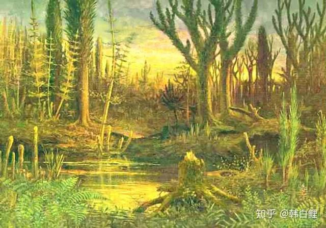 Cá cổ đại tiết lộ bí ẩn về nguồn gốc của ngón tay con người - Ảnh 1.