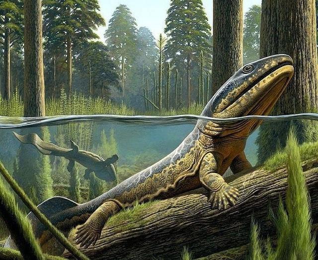Cá cổ đại tiết lộ bí ẩn về nguồn gốc của ngón tay con người - Ảnh 8.