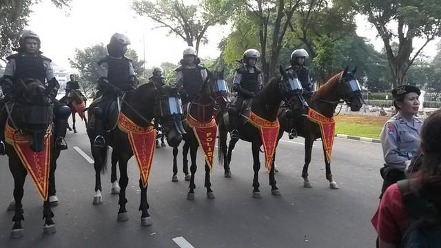 Lợi thế của cảnh sát kị binh ở các nước - Ảnh 2.