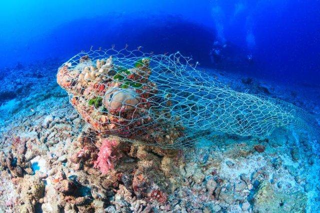 Tranh thủ việc vắng khách do dịch Covid, Thái Lan mở chiến dịch dọn sạch rác, nhựa ở bãi biển - Ảnh 2.