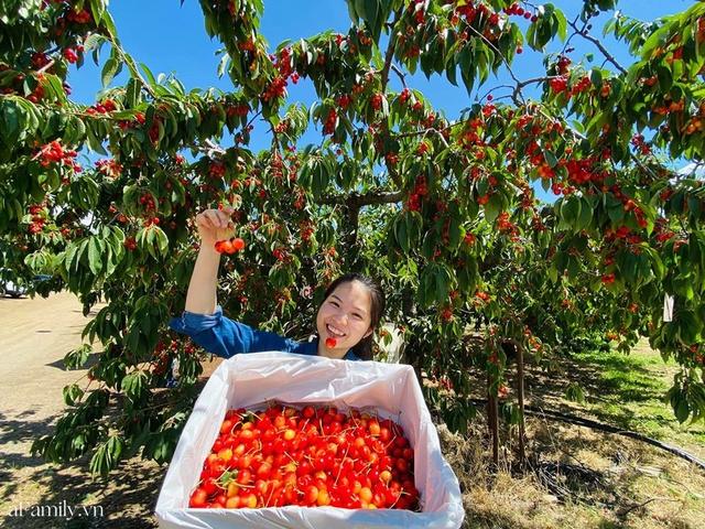 Cặp vợ Việt chồng Mỹ kể lại hành trình tự lái xe đi du lịch khám phá khắp núi rừng nước Mỹ, vào vườn trái cây đẹp như trên phim trong chuỗi ngày tránh dịch Covid-19 - Ảnh 17.