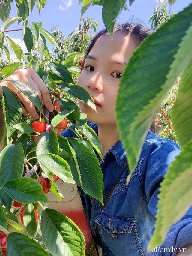 Cặp vợ Việt chồng Mỹ kể lại hành trình tự lái xe đi du lịch khám phá khắp núi rừng nước Mỹ, vào vườn trái cây đẹp như trên phim trong chuỗi ngày tránh dịch Covid-19 - Ảnh 20.