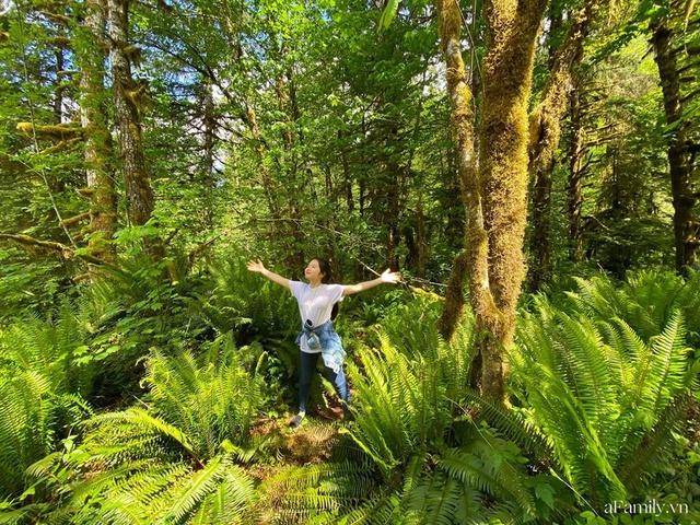 Cặp vợ Việt chồng Mỹ kể lại hành trình tự lái xe đi du lịch khám phá khắp núi rừng nước Mỹ, vào vườn trái cây đẹp như trên phim trong chuỗi ngày tránh dịch Covid-19 - Ảnh 27.