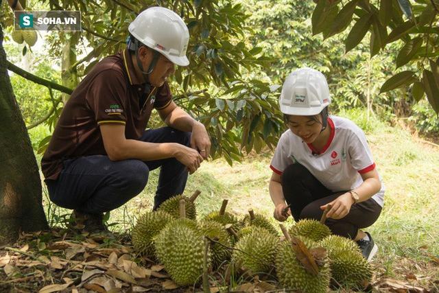Cách làm sầu riêng không giống ai của ông chủ vựa sầu riêng chín tự nhiên đắt nhất nhì Việt Nam - Ảnh 4.