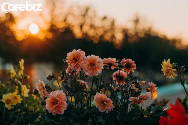 112 ngày dậy sớm từ 3h50 sáng, tôi như sống thêm một cuộc đời mới: Không phải để thành công, tôi chỉ muốn có cơ hội YÊU THƯƠNG mình nhiều hơn - Ảnh 3.