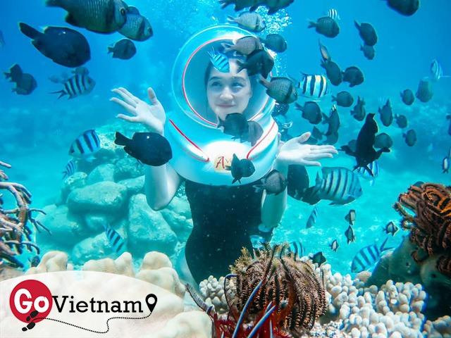 Thử trọn gói dịch vụ 5 sao ở Nha Trang: Đi bộ dưới biển, bay dù lượn, tắm bùn. Chỉ hết 8 triệu? - Ảnh 17.