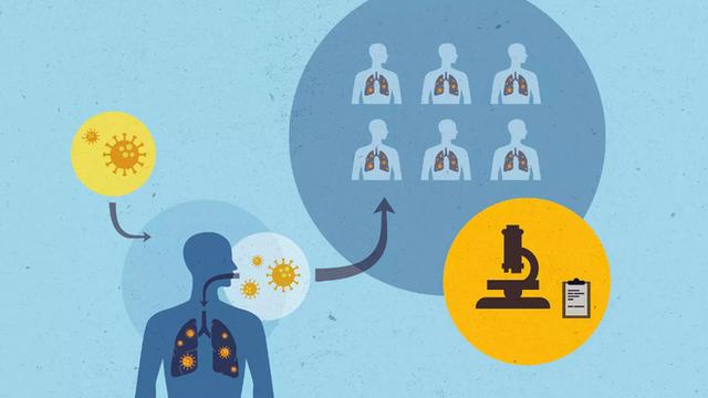 Nửa năm sau đại dịch, đã có 4 ứng viên cho vắc-xin COVID-19, giờ là lúc phải đối mặt với câu hỏi quyết định - Ảnh 1.