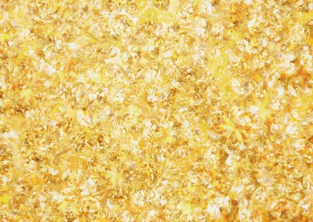 Kháng khuẩn kiểu đại gia: Tắm xà phòng trộn bột vàng, đánh răng vài lần là bốc hơi tiền triệu - Ảnh 7.