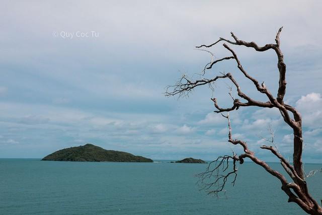 Tới Côn Đảo không chỉ du lịch tâm linh: Cùng khám phá và tận hưởng thiên nhiên hoang sơ tuyệt mĩ với nhiếp ảnh gia Quỷ Cốc Tử - Ảnh 11.