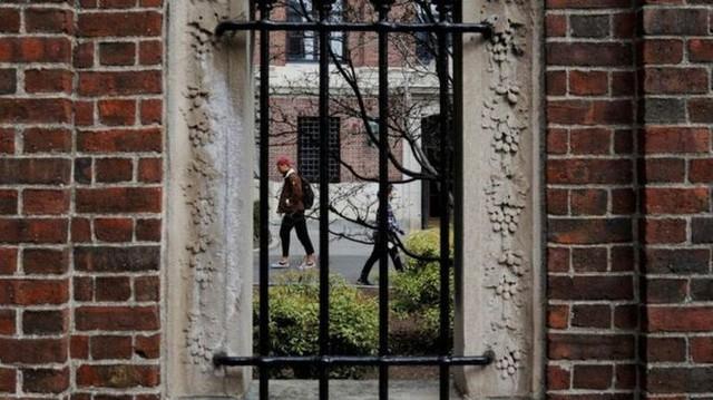 Du học sinh lao đao vì quyết định mới của chính phủ Mỹ  - Ảnh 1.