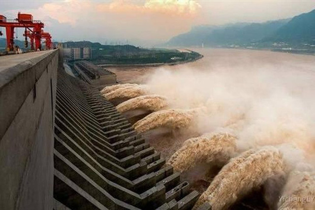 Vì sao sau khi xây xong đập Tam Hiệp, TQ phải thả vào 10.000 con cá? - Ảnh 1.