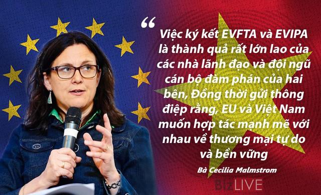 """Hiệp định EVFTA qua góc nhìn """"người trong cuộc"""" - Ảnh 3."""