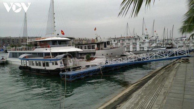 Hơn 100 hộ kinh doanh tàu du lịch Quảng Ninh xin tạm dừng hoạt động - Ảnh 1.