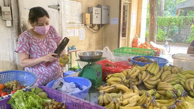 Người dân TPHCM góp hàng tấn rau củ quả cứu đói bầy thú Thảo Cầm Viên mùa dịch COVID-19 - Ảnh 12.