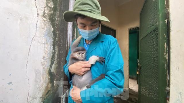 Người dân TPHCM góp hàng tấn rau củ quả cứu đói bầy thú Thảo Cầm Viên mùa dịch COVID-19 - Ảnh 20.