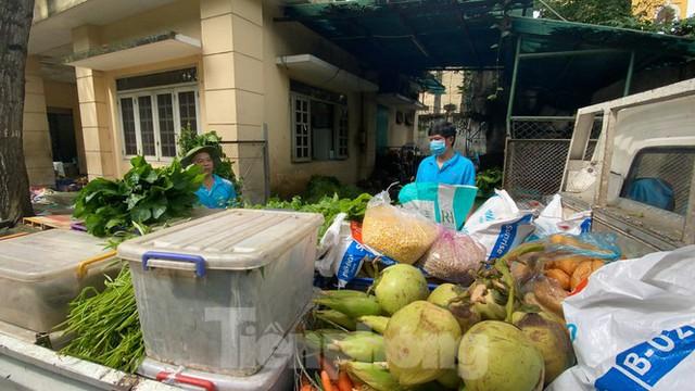 Người dân TPHCM góp hàng tấn rau củ quả cứu đói bầy thú Thảo Cầm Viên mùa dịch COVID-19 - Ảnh 10.