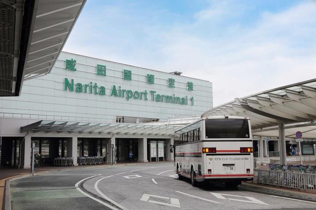 Lão nông từ chối 40 tỷ đồng để trồng rau giữa sân bay quốc tế - Ảnh 2.