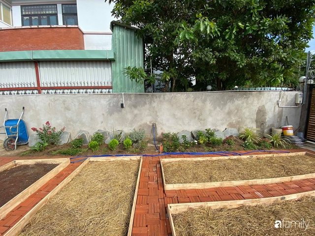 Con gái chi 500 triệu đồng xây nhà vườn container để bố về hưu thỏa mãn đam mê trồng rau ở Sài Gòn - Ảnh 15.