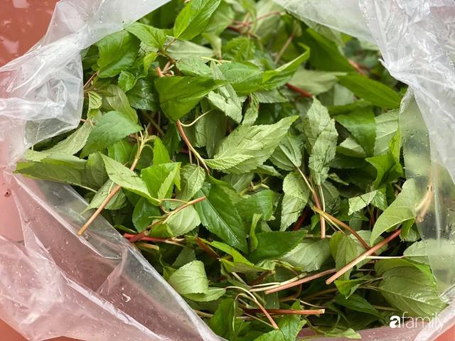 Con gái chi 500 triệu đồng xây nhà vườn container để bố về hưu thỏa mãn đam mê trồng rau ở Sài Gòn - Ảnh 18.