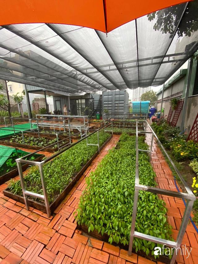 Con gái chi 500 triệu đồng xây nhà vườn container để bố về hưu thỏa mãn đam mê trồng rau ở Sài Gòn - Ảnh 19.